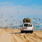 Cuscino cervicale da viaggio: quale scegliere