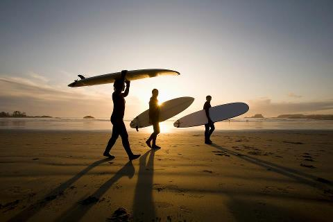 siti fare surf